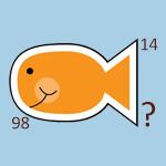 تست هوش: ماهی های ریاضیدان!