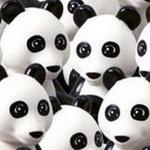 تست هوش تصویری: انجمن پانداها